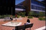 Стипендии для обучения в университете Монаш (Австралия)