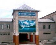 Кызыльская гимназия № 9 отмечает 20-летие