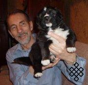 Тувинская овчарка - аборигенная пастушья собака Тувы