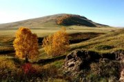 На границе Тувы и Хакасии появится новый заповедник