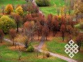 Контраст. Показалось привлекательным увядание деревьев на фоне яркой зелени травы в московском парке.