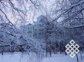 Югорские кружева. Показалось, что дом правительства Ханты-Мансийского автономного округа (Югры) отделился от всех этой красивой зимней баррикадой.