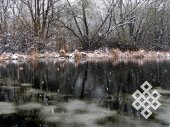 The first snow. I've taken many pictures of this overgrown pond (including pictures from the same spot) but it is always different.