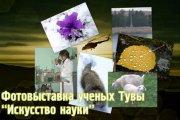 """Фотовыставка ученых Тувы """"Искусство науки"""""""