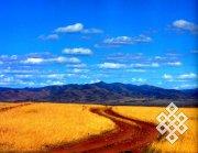 Ученые обсудили проблемы сельского хозяйства Тувы