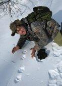 В Саянских горах основной угрозой снежному барсу остаются браконьеры - петельщики
