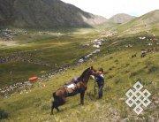Красочный праздник животноводов Наадым имеет тысячелетнюю историю