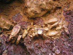 О первых исследованиях по изучению геологического строения и полезных ископаемых Тувинской народной республики