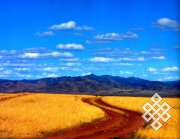 В Тувинском НИИ сельского хозяйства СО РАСХН продолжается работа по размножнению сорта мягкой яровой пшеницы Чагытай