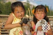 Объявлен конкурс для изучения и сохранения генофонда населения Тувы