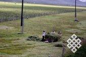 Заготовка сена - нетипичное для монгольского скотоводства дело.