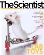 В Америке закрылся научный журнал «Scientist»