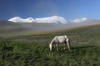 Сакральные территории как хранительницы традиционных ценностей евразийских народов (на примере плоскогорья Укок на Алтае и долины Эрдэнэбурэн в Западной Монголии)