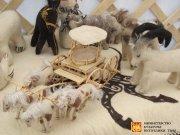В Туве прошел I республиканский фестиваль художественного творчества коренных малочисленных народов Севера и Сибири «Тоджинские самородки»