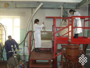 В Туве нацелены на развитие проектов с использованием высоких технологий и инноваций