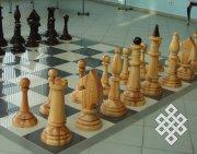 Международный день шахмат в Туве отметили сеансом одновременной игры