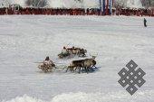 """Фотовыставка Юрия Попкова """"Олени и люди"""""""