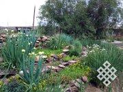 Ботанический сад Тувинского госуниверситета включен в Совет ботанических садов Сибири и Дальнего Востока