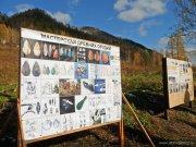 «Колыбель человечества» открылась в Алтайском крае