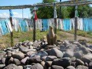 В Бурятии началось строительство первого в России шаманского храма