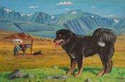 Выставка тувинских овчарок планируется летом в Туве