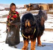 Анонс конференции «Тибет глазами российских путешественников»