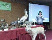 В Национальном музее Тувы прошла презентация коллективной монографии «Степи и залежи Тувы»